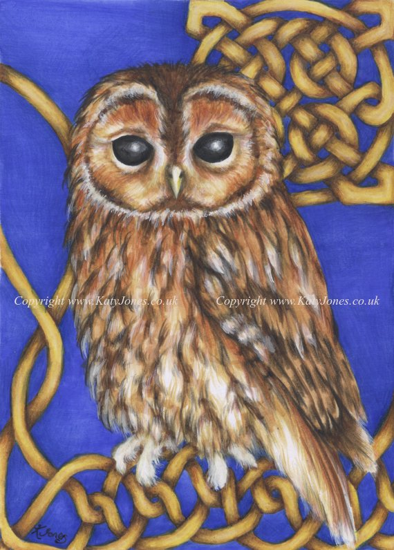Illustration of Torrin the Tawny Owl