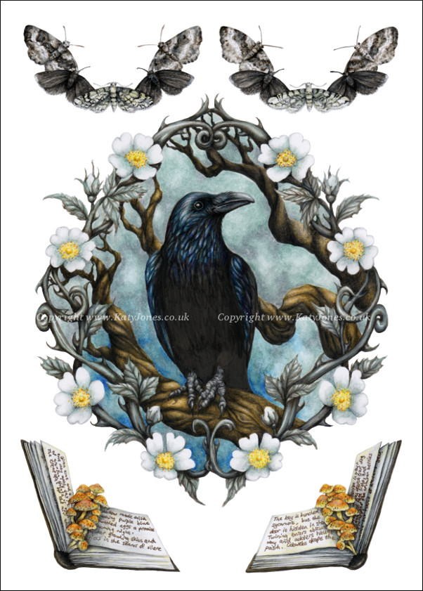 Illustration of a raven